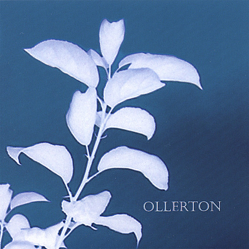 Ollerton