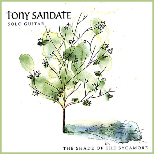 Shade of the Sycamore
