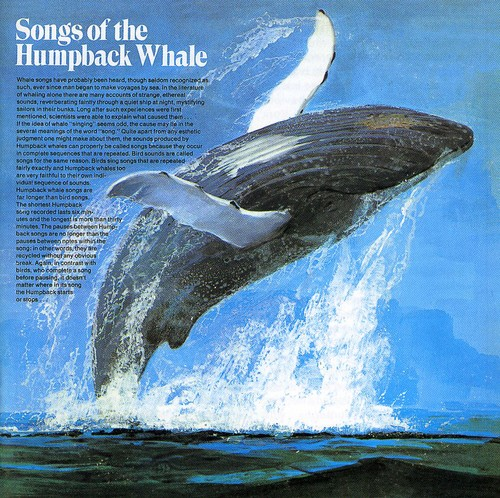 Songs of the Humpback Whale [Import]