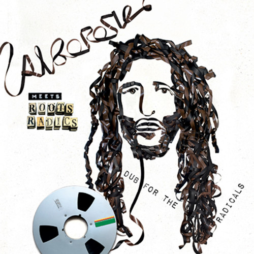 Alborosie - Alborosie Meets Roots Radics - Dub For The Radicals [LP]
