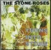 Turns Into Stone [Import]