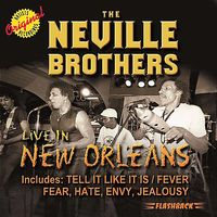 Neville Brothers - Live in New Orleans