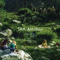 Sam Amidon - Lily-O [Vinyl]