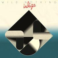 Wild Nothing - Indigo [LP]