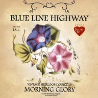 Blue Line Highway - Morning Glory