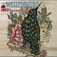 The Wallflowers - Rebel, Sweetheart