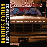 Gin Blossoms - New Miserable Experience (Rarities Edition)