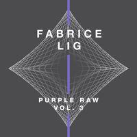 Fabrice Lig - Pure Raw 3