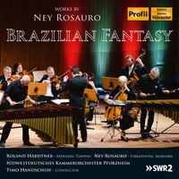 Südwestdeutsches Kammerorchester Pforzheim - Brazilian Fantasy