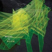 White Out With Nels Cline - Accidental Sky [Vinyl]