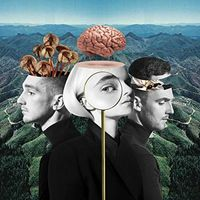 Clean Bandit - What Is Love? [Import Deluxe]
