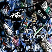 Mes - Journal of a Junkie
