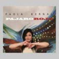Paola Bernal - Pajaro Rojo