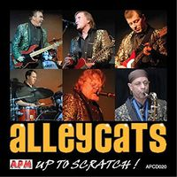 Alleycats - Up To Scratch!
