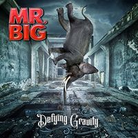 Mr. Big - Defying Gravity [LP]