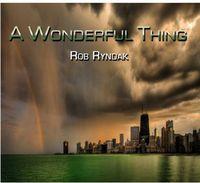 Rob Ryndak - Wonderful Thing