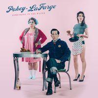 Pokey LaFarge - Something In The Water [Vinyl]