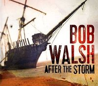 Bob Walsh - After The Storm (Can)