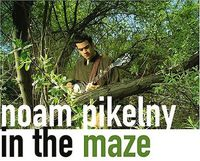 Noam Pikelny - In the Maze