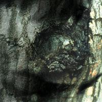 Yann Tiersen - La Valse Des Monstres