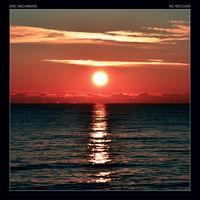 Eric Bachmann - No Recover [LP]