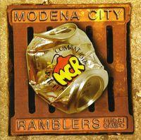 Modena City Ramblers - Fuori Campo [Import]