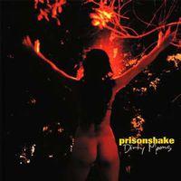 Prisonshake - Dirty Moons