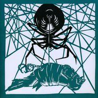 Okkervil River - Wake & Be Fine