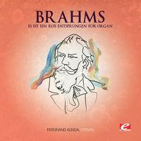 Brahms - Es Ist Ein Ros Entsprungen for Organ