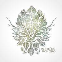 Indubious - From Zero
