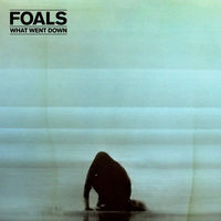 Foals - What Went Down [Deluxe w/DVD]