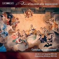 Bach Collegium Japan - Secular Cantatas 10 (Hybr)