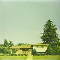The Orwells - Disgraceland [Clear Vinyl]