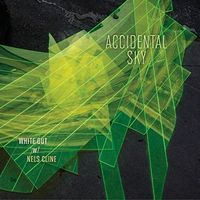 White Out With Nels Cline - Accidental Sky