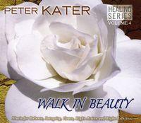 Peter Kater - Walk In Beauty