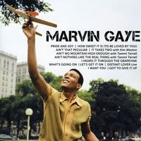 Marvin Gaye - Icon