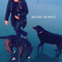 David Bazan - Blanco
