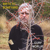 Gurf Morlix - Birth To Boneyard