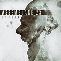 Assemblage 23 - Endure [Limited Edition]