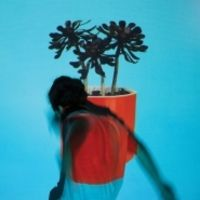 Local Natives - Sunlit Youth [LP]
