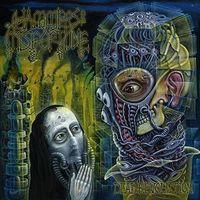 Hammers Of Misfortune - Dead Revolution [Vinyl]