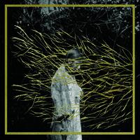 Forest Swords - Engravings [Vinyl]