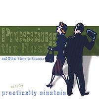 Practically Einstein - Pressing the Flesh & Other Steps to Success