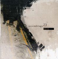 Assemblage 23 - Meta