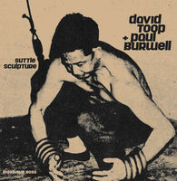 David Toop - Suttle Sculpture