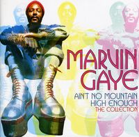 Marvin Gaye - Ain't No Mountain High Enough: The Collection [Import]