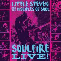 Little Steven - Soulfire Live! [Blu-ray]
