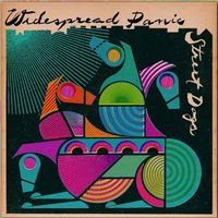 Widespread Panic - Street Dogs