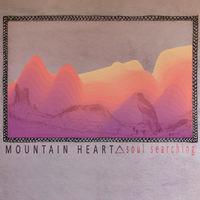 Mountain Heart - Soul Searching