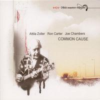 Attila Zoller - Common Cause